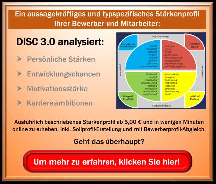 Disc 3.0 Die Potenzialanalyse