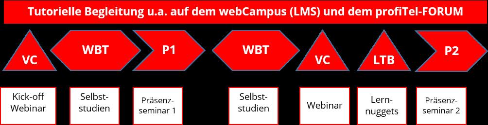 tutorielle-begleitung-auf-dem-webcampus